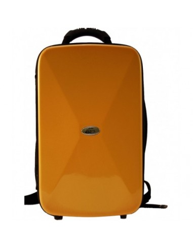 ESTUCHE BAGS 2 CLARINETES SIb/LA ORO